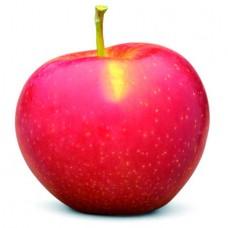 Manzanas Nicoter